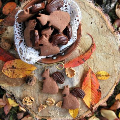 Biscotti-scoiattolo con farina di castagne e miele al cioccolato e noci
