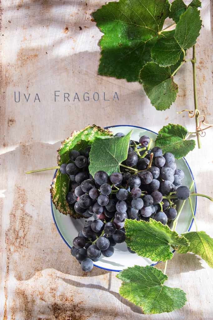 uva-fragola-copia